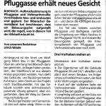 20090505_pfluggasse_24_schwaez